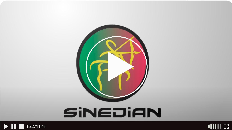 Radicacion de Pliego de Peticiones - SINEDIAN 26 Feb. 2021